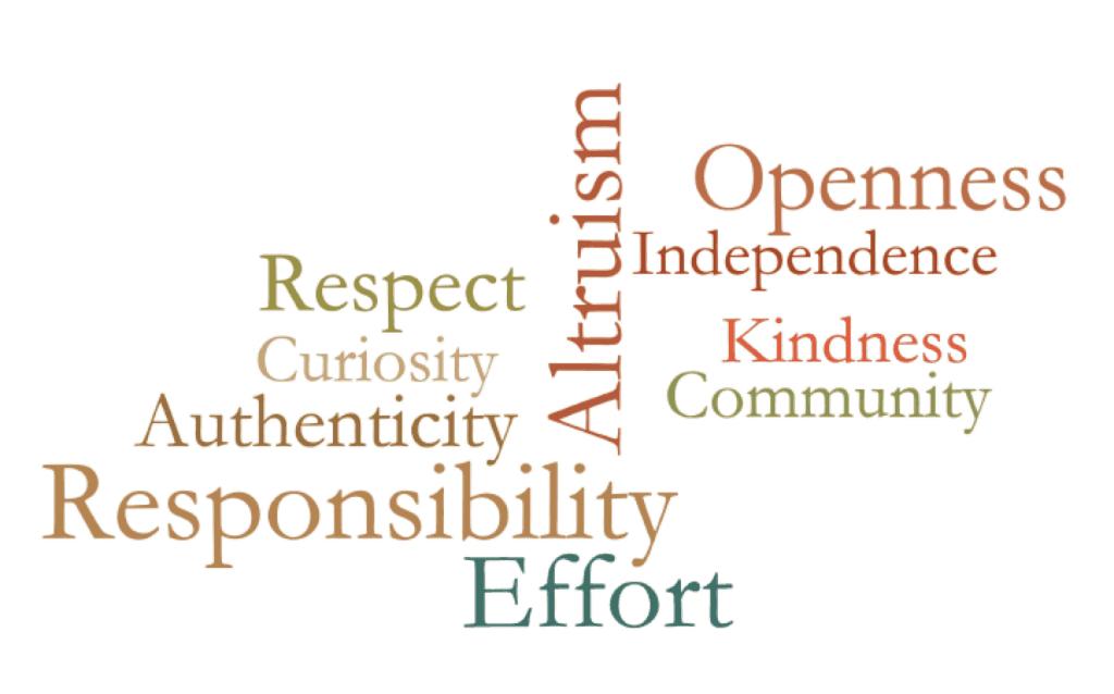 ECFE Values Lani Shapiro