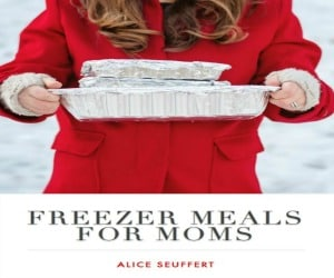300 Freezer Meals for Moms Cover