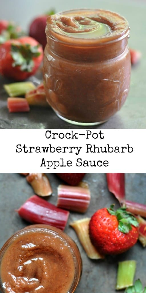 Strawberry Rhubarb Apple Sauce