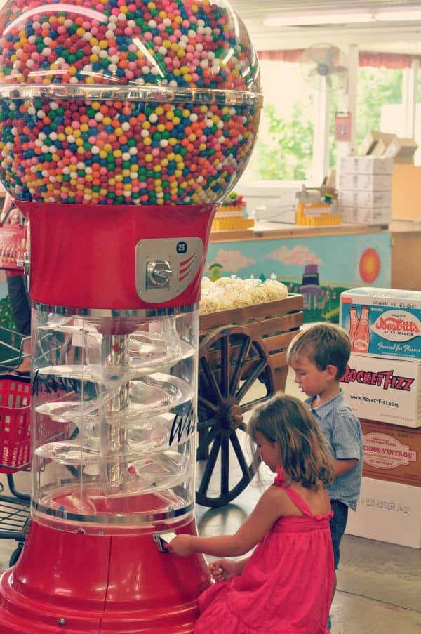 The 10 Things You Must Do When Visiting the Largest Candy Store in Minnesota!