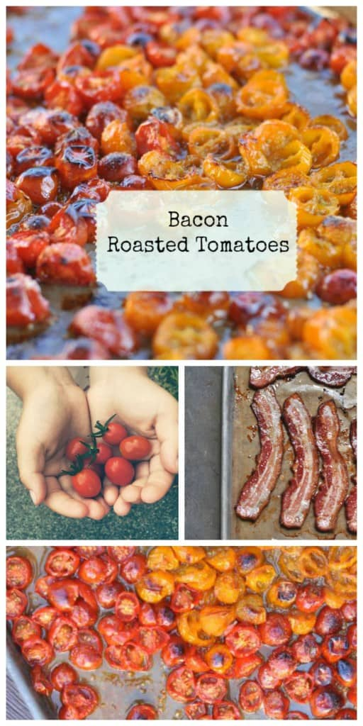 Super simple Roasted Tomatoes made with bacon. #bacon #tomatoes