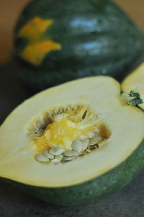 Turkey Stuffed Squash