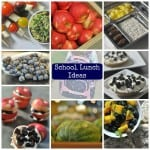 Snacks and School Lunch Ideas