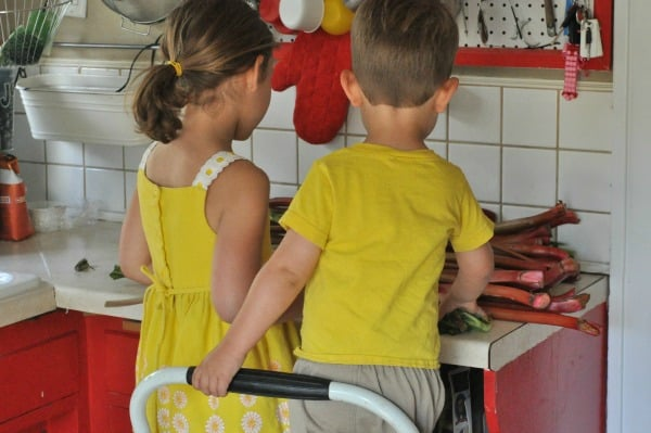 Kids and Rhubarb Summer Cooking with Kids