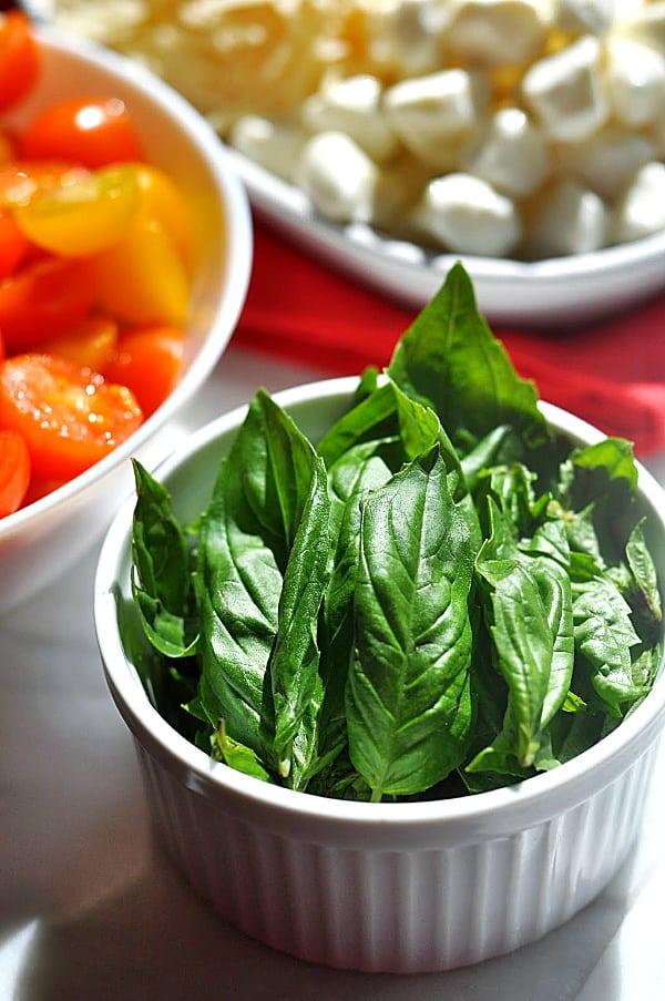 Caprese pasta salad ingredients of basil
