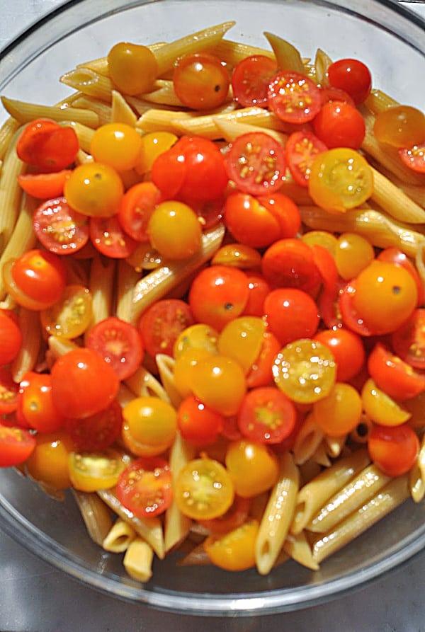 Caprese pasta salad ingredients of tomatoes and pasta